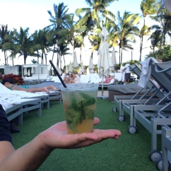 vodka mojitos all day